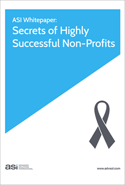 Not-for-Profit Executive Guide: Secrets of Highly Successful Non-Profits