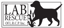 Lab Rescue L.C.R.P. Inc