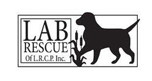 Lab Rescue of the LRCP